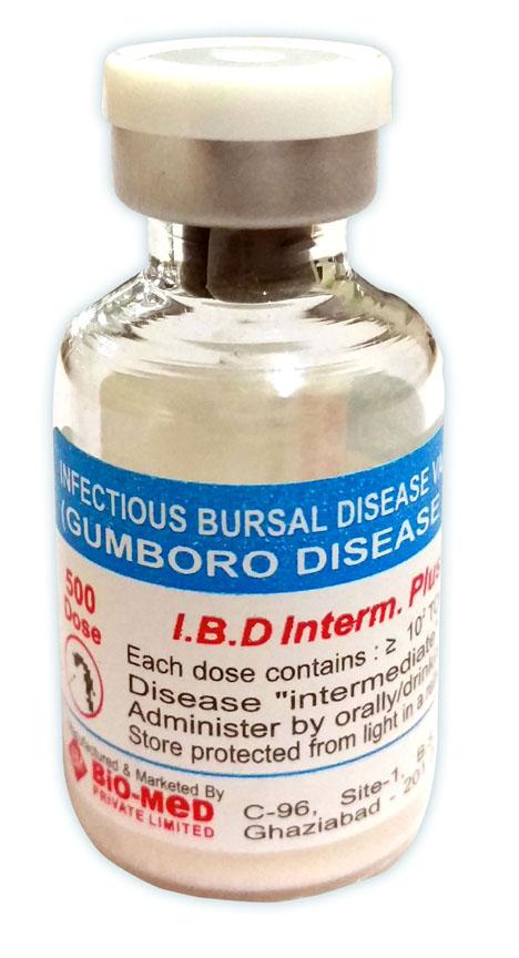 Infectious Bursal Disease Vaccine Live I P  Brand Name: IBD